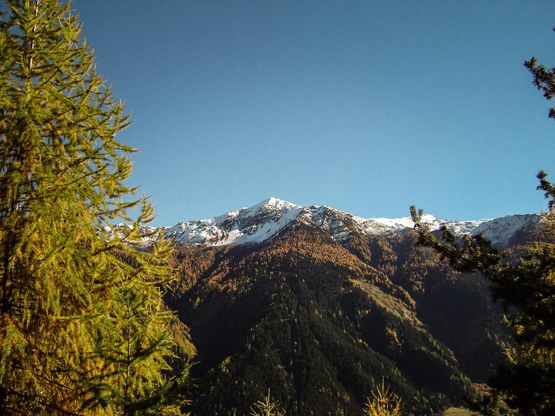 Alpenheim-Suedtirol-Taufers-020