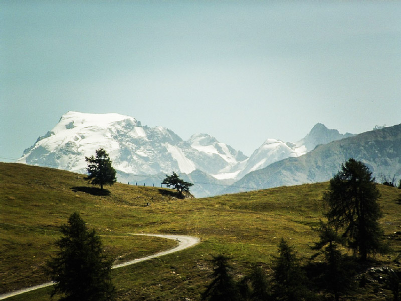 Alpenheim-Suedtirol-Taufers2-3