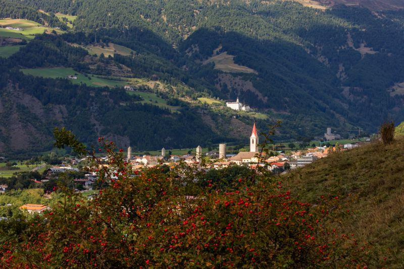 Vinschgau-Sommerimpressionen 15