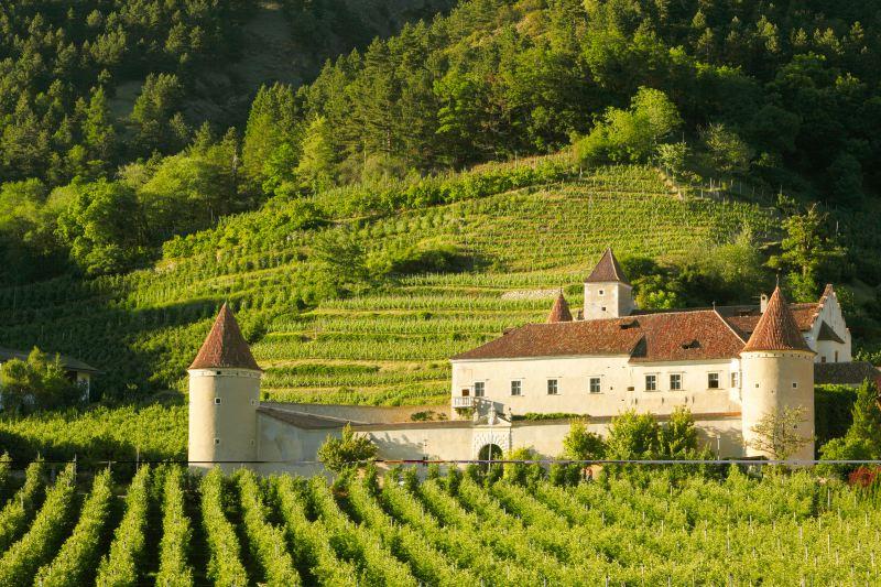Vinschgau-Sommerimpressionen 18
